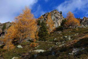 weise-spitze-30-10-2016-64